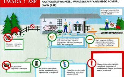 ASF to nadal wielkie zagrożenie dla hodowli świń także na terenie Powiatu Iławskiego